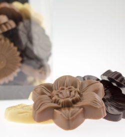 chocolaatjes
